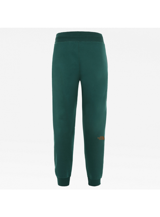 The North Face Men's Night Green NSE Joggers