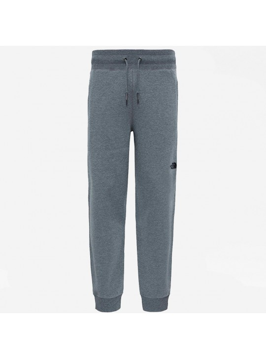 The North Face Men's Grey NSE Joggers